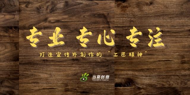 山東創意視頻制作咨詢「武漢當夏時光文化創意供應」