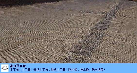 吐鲁番**土工格栅报价 新疆新鑫亨泽环保供应