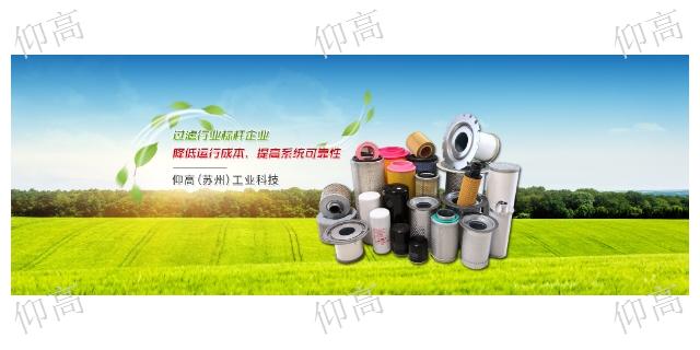 上海德斯兰压缩机滤芯 欢迎来电 仰高工业科技供应