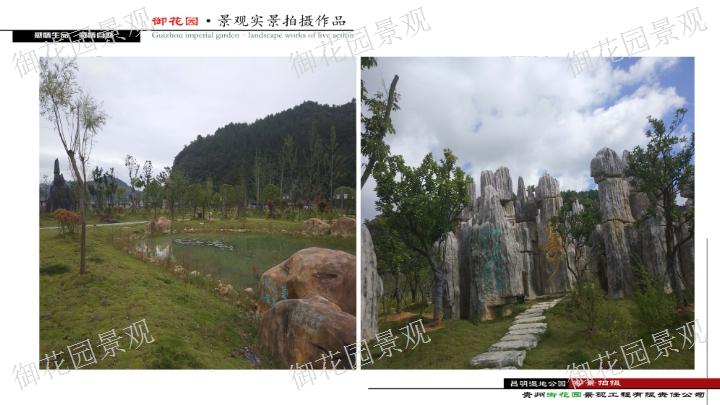遵义浮雕景观施工 信息推荐「贵州御花园景观工程供应」