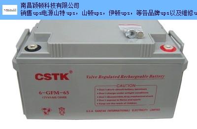 宜春在線式ups蓄電池廠家電話 鑄造輝煌 南昌穎頓科技供應