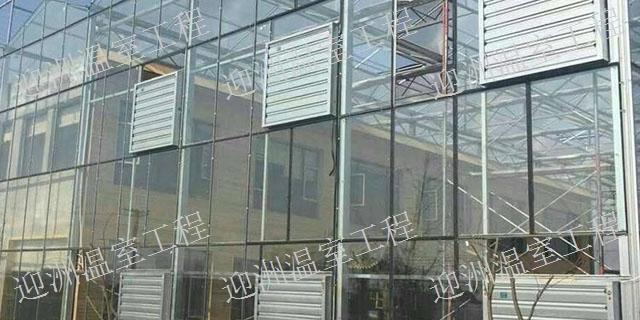 山东玻璃温室多少钱一平方 有口皆碑「青州市迎洲温室工程供应」