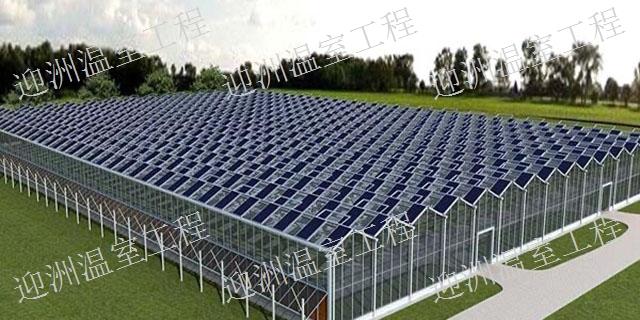 新疆光伏温室造价 欢迎来电「青州市迎洲温室工程供应」