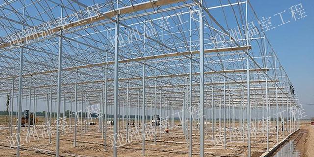 貴州種菜溫室大棚多少錢一平方