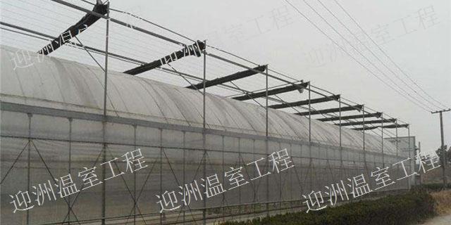 寧夏哪里建滴灌溫室大棚