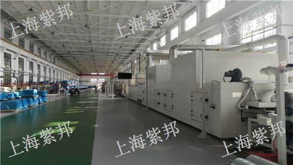 江蘇涂漆線設備類型 歡迎咨詢 上海紫邦科技供應