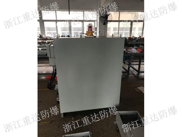 北京防爆正压柜定做厂家 欢迎来电 浙江重达防爆电器供应