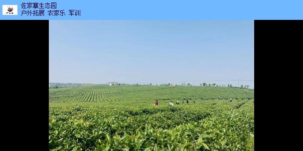 青山湖区户外烧烤活动团 来电咨询 江西佐家寨生态农业发展供应