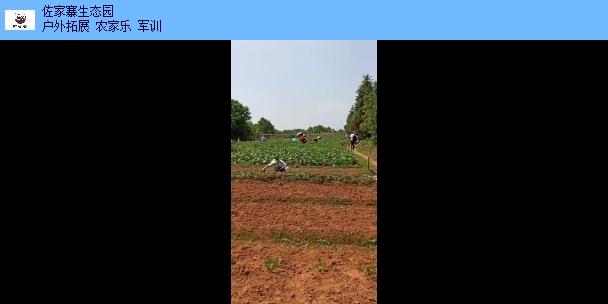 黎川露营户外活动策划 和谐共赢「江西佐家寨生态农业发展供应」
